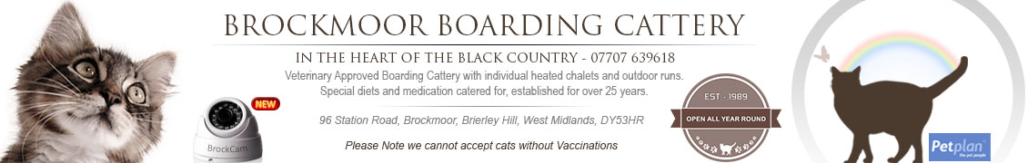 Brockmoor Boarding Cattery header
